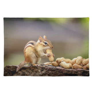 Chipmunk eating a peanut placemat
