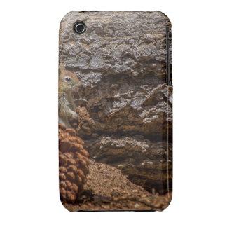 Chipmunk Harvest iPhone 3 Case-Mate Case