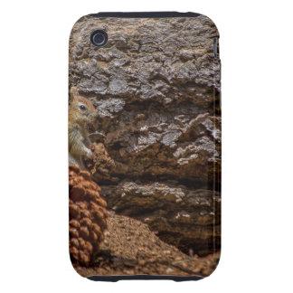 Chipmunk Harvest Tough iPhone 3 Case