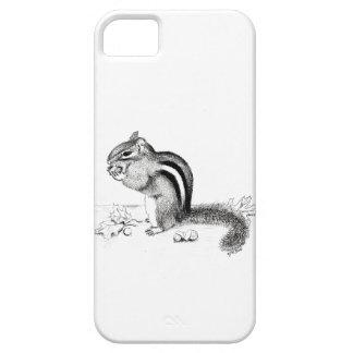 Chipmunk iPhone 5 Cover