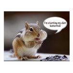 Chipmunk on a Diet Photo
