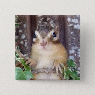 Chipmunk photo (20-3) 15 cm square badge