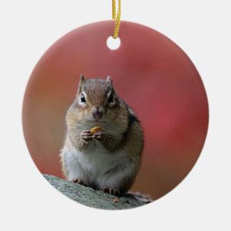 Chipmunk photo ceramic ornament