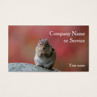 Chipmunk sitting upright business card
