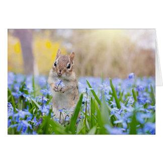 Chipmunk With Flower Card