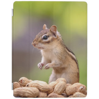 Chipmunk with peanuts iPad cover