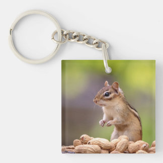 Chipmunk with peanuts key ring