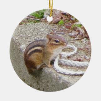 Chippie The Chipmunk Investigates A Rope Ceramic Ornament
