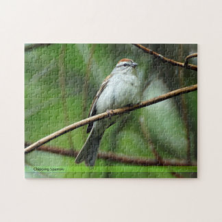 Chipping Sparrow Bird Puzzle