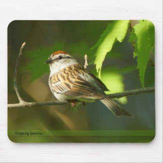 Chipping Sparrow Mousepad