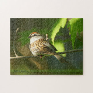 Chipping Sparrow Puzzle