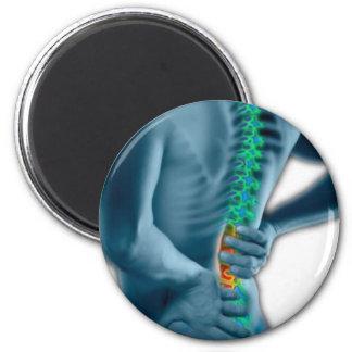 Chiropractic Magnet
