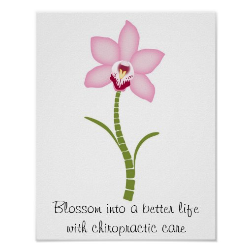 Chiropractic Orchid Poster