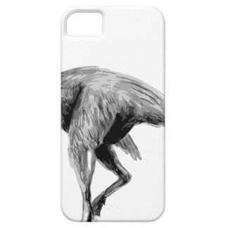 Chirostenotes Case For The iPhone 5