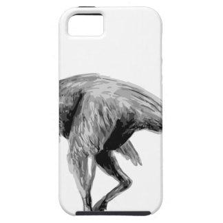 Chirostenotes iPhone 5 Case