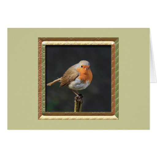 Chirpy Robin Cards