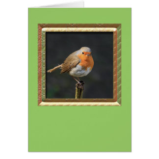 Chirpy Robin Greeting Card