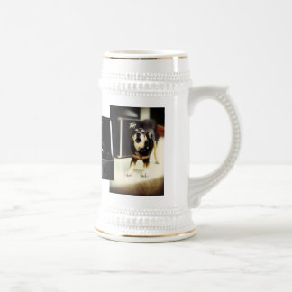 Chitto in the City Beer Stein