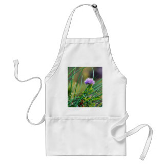 Chives Blue On Grass Aprons