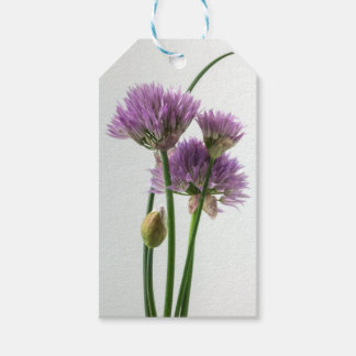 chives in bloom gift tags