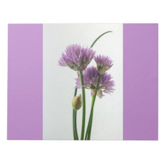 chives in bloom notepad