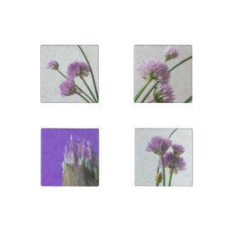 chives in bloom stone magnet