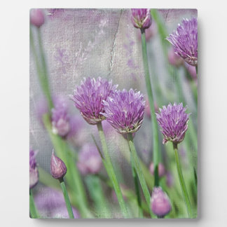 Chives in texture photo plaque