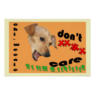 Chiweenie Don't Care Poster