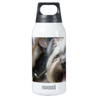 Chloe 0.3L Insulated SIGG Thermos Water Bottle