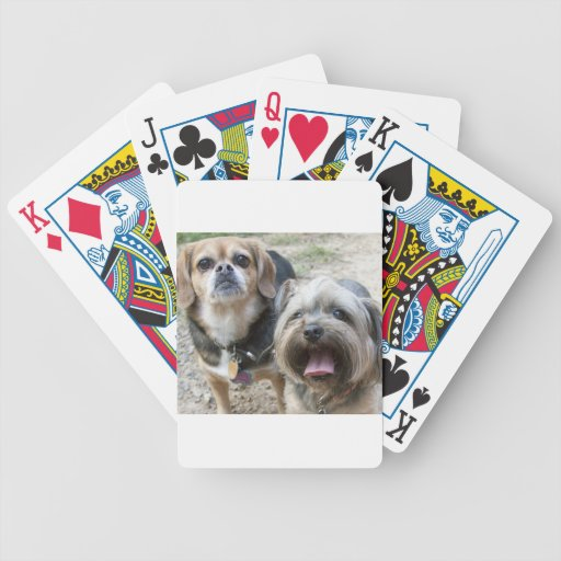 Chloe Bicycle Playing Cards