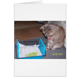 Chloe the Cat Helping you to relax Greeting Card