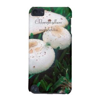 Chlorophyllum_molybdites iPod Touch 5G Covers