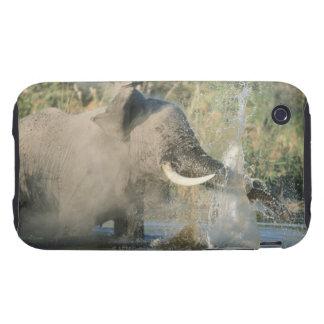 Chobe River, Botswana, Africa iPhone 3 Tough Covers