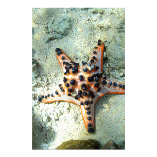 Chocolate chip starfish custom stationery