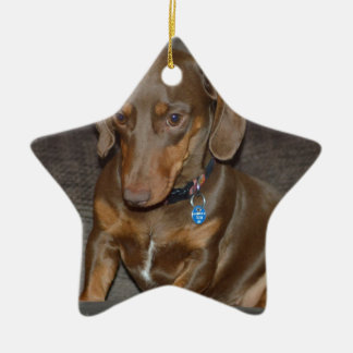 Chocolate Dachshund Ceramic Star Decoration