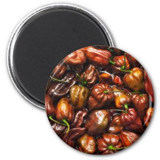 Chocolate Habanero 6 Cm Round Magnet