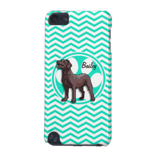 Chocolate Lab Aqua Green Chevron iPod Touch (5th Generation) Cover