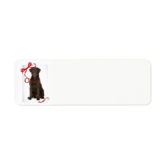 Chocolate Lab Christmas Return Address Labels