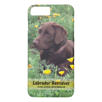 Chocolate Lab in California Poppy Patch iPhone 7 Plus Case