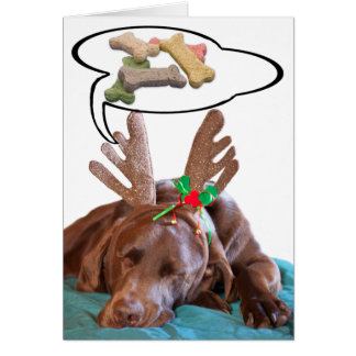 Chocolate Lab With Antlers And Treat Dreams Photog Card