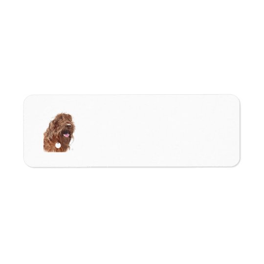 Chocolate Labradoodle Return Address Label