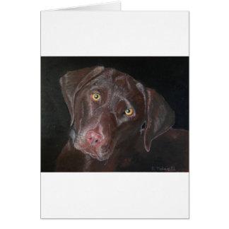 Chocolate Labrador Card