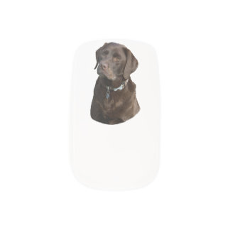 Chocolate Labrador dog photo portrait Minx Nail Art