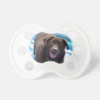 Chocolate Labrador having fun in a swimming pool Dummy