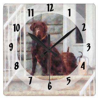 Chocolate Labrador on Porch Square Wall Clock