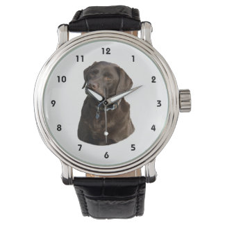 Chocolate Labrador photo portrait Watch