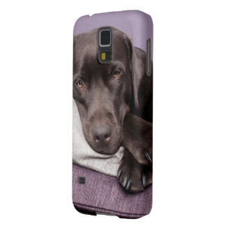 Chocolate labrador retriever dog tired on pillows galaxy s5 covers