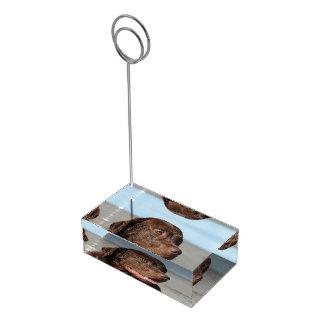 Chocolate Labrador Retriever Table Card Holders