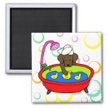 Chocolate Labrador & Rubber Ducks Cartoon Square Magnet
