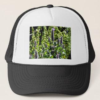 Chocolate Mint in the Summer Garden Trucker Hat